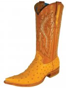 Exotic Skin Western Boot